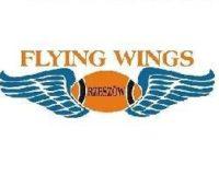 https://www.pzrnw.pl/wp-content/uploads/2020/08/Flying-Wings-e1598269611983.jpg